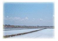 2)ミネラルの豊富な海水が、満潮時に108個の石の部屋(麦飯石でできた)を流れて濃縮されます。